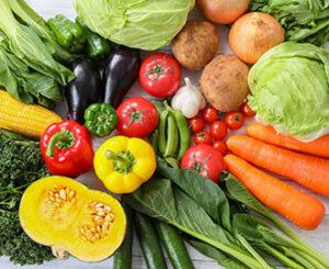 Fresh food┃生鮮食品・食品関連